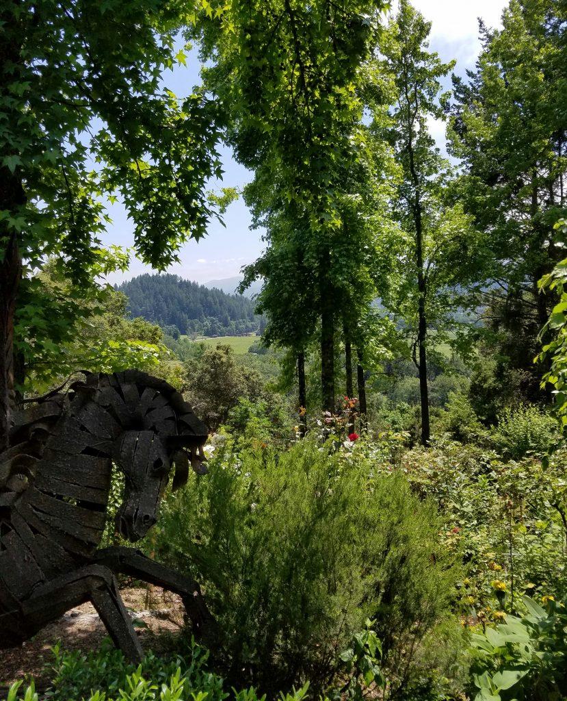 A breathtaking vista at Rombauer Vineyards