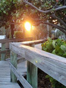 Sun setting over Florida.